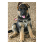 German Shepherd Puppy Invitation