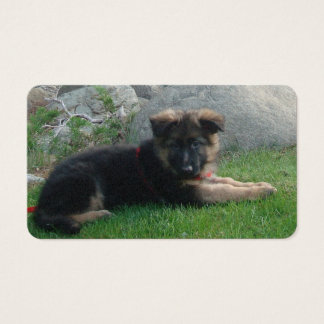 german shepherd puppy laying 2.png business card