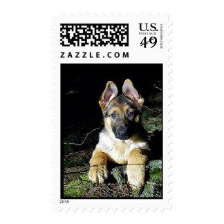 German-Shepherd Puppy Postage Stamp