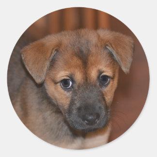 German Shepherd Puppy Stickers