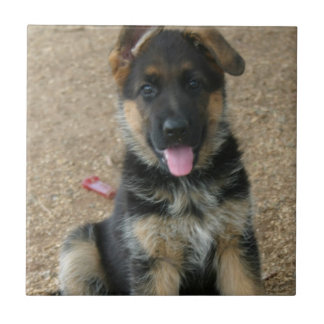 German Shepherd Puppy Tile