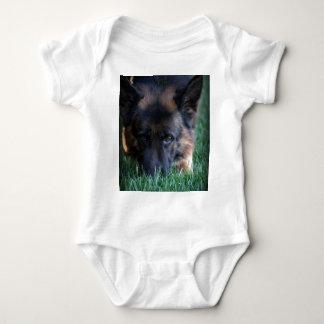 German Shepherd Randy vom Leithawald Infant Creeper