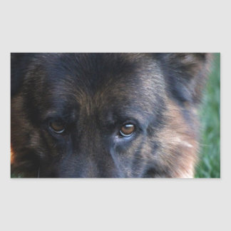 German Shepherd Randy vom Leithawald Rectangular Sticker