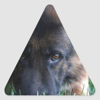 German Shepherd Randy vom Leithawald Triangle Sticker