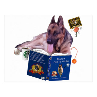 German Shepherd Reading Book Postcard