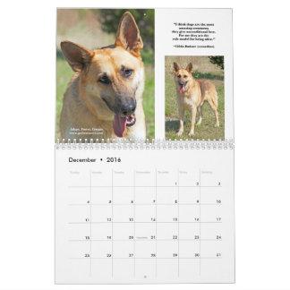 German Shepherd Rescue Calendar - 2016