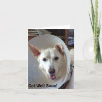 Rescue Cards | Zazzle