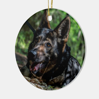 German Shepherd Resting in The Shade Ceramic Ornament