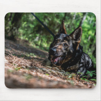 German Shepherd Resting in The Shade Mouse Pad
