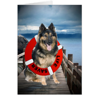 German Shepherd Search & Rescue Cards