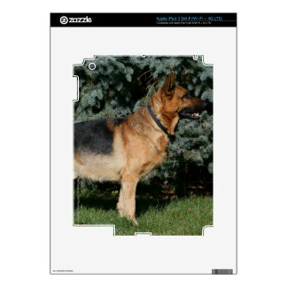 German Shepherd Show Stand Decal For iPad 3