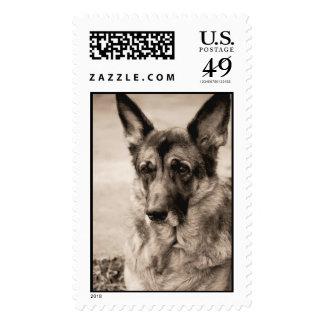 German Shepherd Stamps