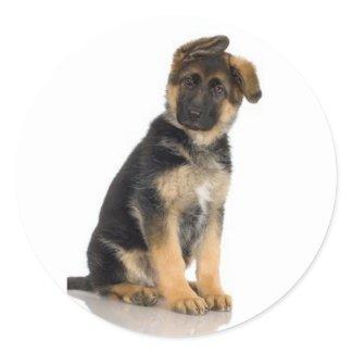 German Shepherd Stickers sticker