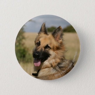 German Shepherd Sticking Tongue Out Button