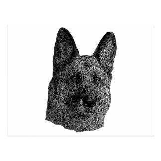 German Shepherd Stylized Image Postcard