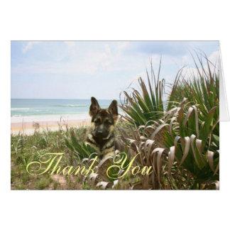 German Shepherd Thank You Card Beachgrass