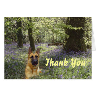 German Shepherd Thank You Card Forest