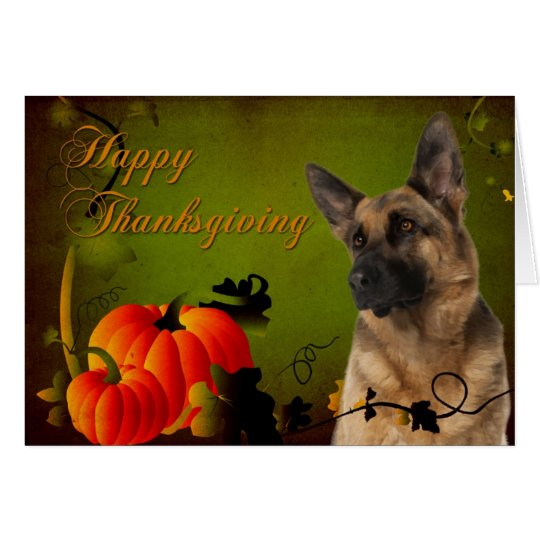 German Shepherd Thanksgiving Card
