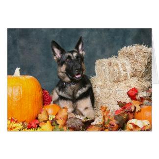 German Shepherd Thanksgiving Card