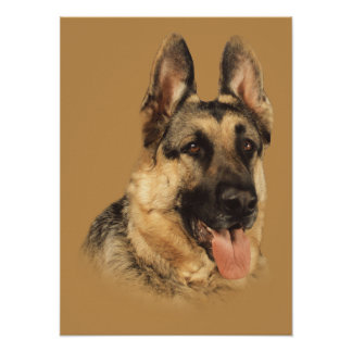 German Shepherd Very Handsome Print