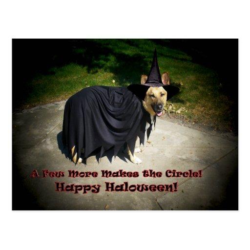 German Shepherd Witch Dog Post Card