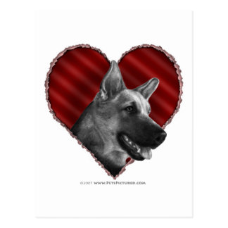 German Shepherd with Heart Postcard