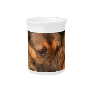 German Shepherd with One Floppy Ear Beverage Pitcher