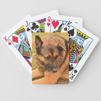 German Shepherd with One Floppy Ear Bicycle Playing Cards