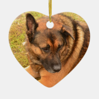 German Shepherd with One Floppy Ear Ceramic Ornament