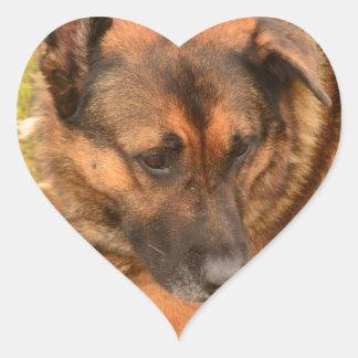 German Shepherd with One Floppy Ear Heart Sticker