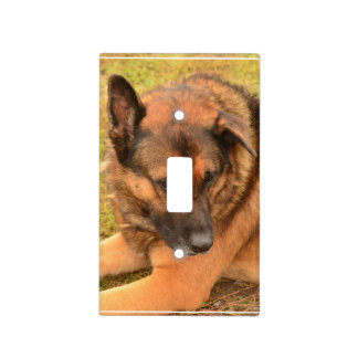 German Shepherd with One Floppy Ear Light Switch Cover
