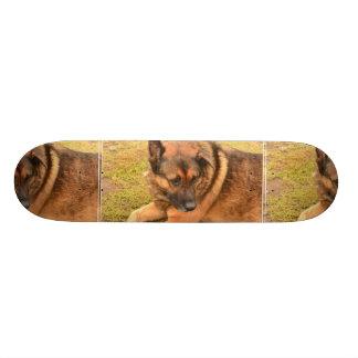 German Shepherd with One Floppy Ear Skateboard