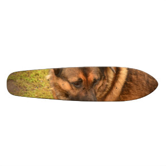 German Shepherd with One Floppy Ear Skateboard Deck