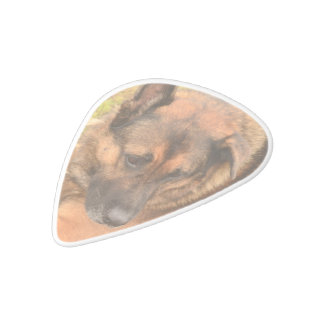German Shepherd with One Floppy Ear White Delrin Guitar Pick