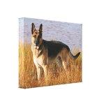 German Shepherd Wrapped Canvas Print
