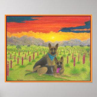 """""""German Shepherds At  Sunset"""" Poster"""