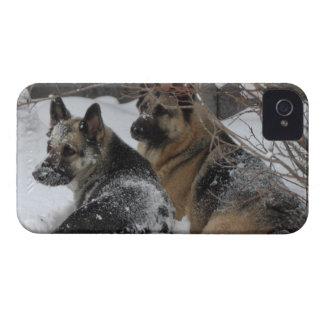 German Shepherds Best Friends iPhone 4 Case