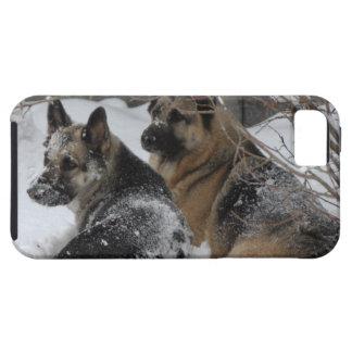 German Shepherds Best Friends iPhone SE/5/5s Case