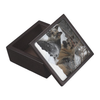 German Shepherds Best Friends Keepsake Box