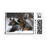 German Shepherds Best Friends Postage Stamps