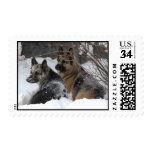 German Shepherds Best Friends Stamps