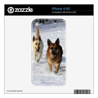 German Shepherds Running in the Snow iPhone 4 Skins