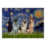German Shepherds  Three - Starry Night Poster