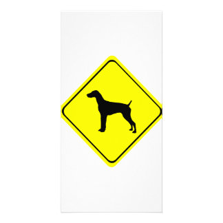 German short-Haired Pointer Dog Crossing Sign Photo Card