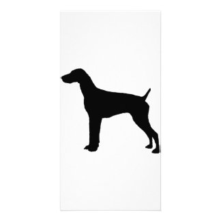 German Short-haired Pointer dog Silhouette Photo Card