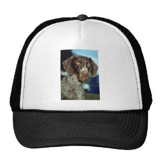 German Short-haired Pointer Trucker Hat