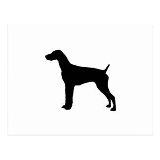 German Short-Haired Pointer Silhouette Love Dogs Postcard