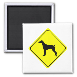 German Short-Haired Pointer Warning Sign Love Dogs Magnet