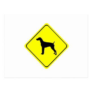 German Short-Haired Pointer Warning Sign Love Dogs Postcard