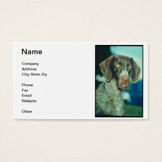 German Shorthair Pointer Business Card